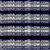 Live Muscle Show at CockSuckerVideos.com