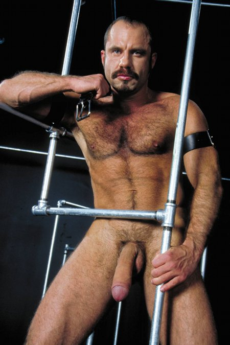 Andreas Stern Raging Stallion