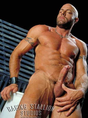Dillon Press Raging Stallion