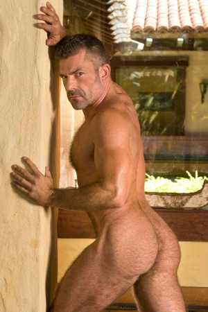 Bruno Bond Raging Stallion