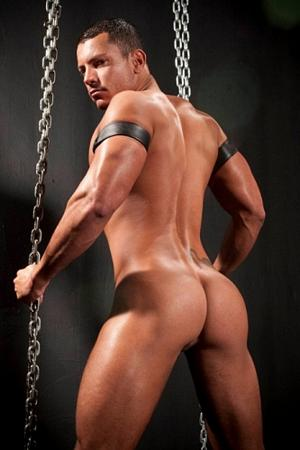 Angelo Marconi Raging Stallion
