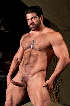 Vince Ferelli Raging Stallion