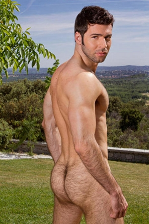 Dario Beck Raging Stallion