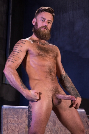 Hoytt Walker Raging Stallion