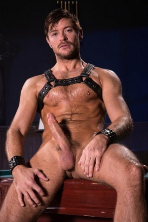 Jack Andy Raging Stallion
