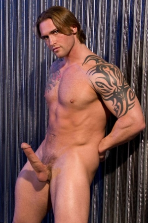 David Taylor Raging Stallion