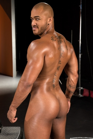 Jason Vario Raging Stallion