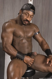 Lee Mane Raging Stallion