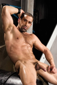 Leo Rocca Raging Stallion