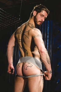 Logan McCree Raging Stallion