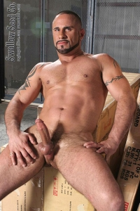 Marco Cruise Raging Stallion