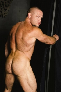 Peter Axel Raging Stallion