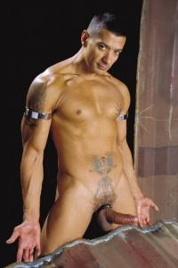 Ruben DAngelo Raging Stallion