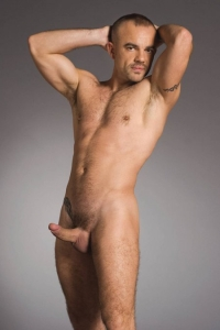 Taurus Dean Raging Stallion