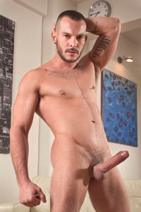 Tomy Hawk Raging Stallion