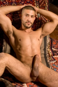 Tony Aziz Raging Stallion