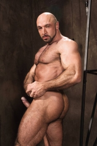 Xerxes Raging Stallion