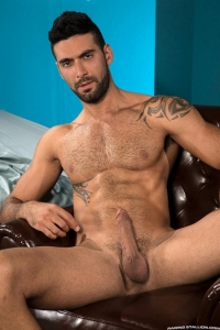 Mick Stallone Raging Stallion