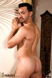 Ivan Andros Raging Stallion