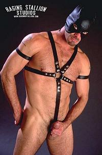 Eli Horst Raging Stallion