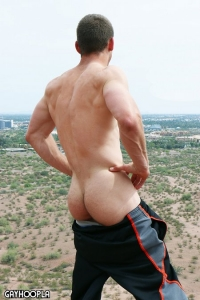 Joel Wentz Gay Hoopla