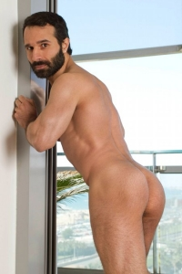 Aybars Raging Stallion