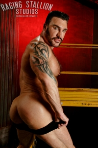 Nick Angelo Raging Stallion
