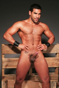 Nick Marino Colt Studio Group