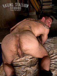 Steve John Raging Stallion