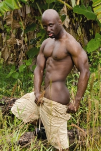 Jay Black Raging Stallion