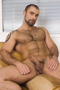 Alex Baresi Raging Stallion