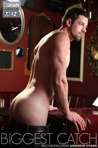 Andrew Stark Naked Sword
